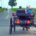 AmishVillage_Buggy